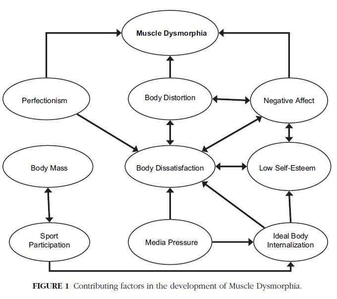 Grieve et al, 2007