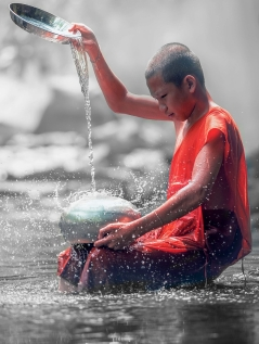color-splash-1852649_1920
